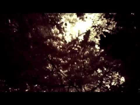 Parilanjärvi Video